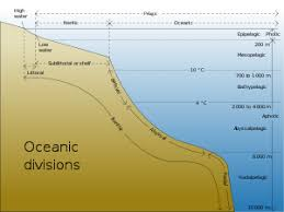 Audio Adrenaline Ocean Floor Album by Seabed Wikipedia