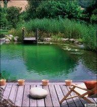 épinglé par chris gregg sur concrete piscines