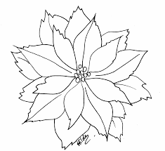 Extraordinary Poinsettia Clip Art Black And White With Coloring Page