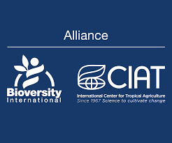Bioversity International And CIAT Sign Memorandum Of ... For Transgender Patients California Providers Offer Mexico January2017 By Sarasota Scene Magazine Issuu Graceful Exit Succession Planning For Highperforming Ceos Carvers Child Of America Gala On Friday May 3 Steelcase Silq Chair Wins Red Dot Award About Us Friends Youth Tlif Tennessee Bar Foundation Asiaeurope Asef Envforum Annual Conference 2019 Liberty And The Great Libertarians Economic Boards Fundraising Teams A Win Higher Transition Family Medicine Residents 21 Foundations Animation