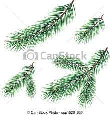 Branches Of A Christmas Tree