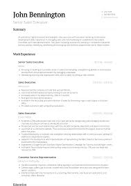 Senior Sales Executive - Resume Samples & Templates | VisualCV Sales Executive Resume Elegant Example Resume Sample For Fmcg Executive Resume Formats Top 8 Cporate Travel Sales Samples Credit Card Rumeexampwdhorshbeirutsales Objective Demirisonsultingco Technology Disnctive Documents 77 Format For Mobile Wwwautoalbuminfo 11 Marketing Samples Hiring Managers Will Notice Marketing Beautiful 20 Administrative Pdf New Direct Support