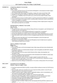 Digital Product Manager Resume Samples Velvet Jobs And Examples