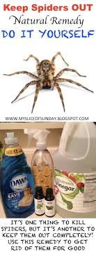 How To Get Rid Of Spiders | Spider Spray, Spider And Sprays How To Keep Mosquitoes Away Geting Rid Of Five Tips For Getting Bugs And Pests On Your Patio Youtube To Get Chiggers Skin Body Yard Symptoms Fast Crawly Catures In My Backyard Alberta Home Gardening 25 Unique Rid Spiders Ideas Pinterest Kill Off Bug Control I Repellent Spiders Spider Spray Sprays Cutter 16 Oz Outdoor Foggerhg957044 The Of Time Tested Bob Vila Pictures With Japanese Beetles Garden Best Indoor Mosquito Killers Insect Cop