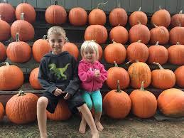 Pumpkin Patch Parker County Texas by Porter U0027s Pumpkin Patch Home Facebook
