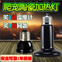 Ceramic Heat Lamp For Hedgehog by Reptile Singing Insects From The Best Taobao Agent Yoycart Com