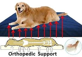 Top Rated Orthopedic Dog Beds by Orthopedic Dog Beds Memory Foam U2013 Restate Co