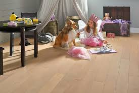 Types Of Floor Covering And Their Advantages by Pet Friendly Flooring Armstrong Flooring Residential