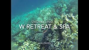 100 W Retreat Maldives Snorkeling In RETREAT SPA MALDIVES