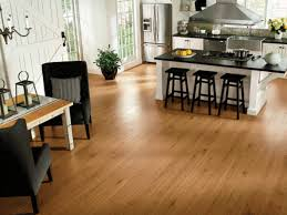 Bamboo Hardwood Flooring Pros And Cons by The Pros And Cons Of Natural Bamboo Flooring Kitchen Most