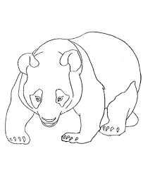 Panda Bear Coloring Pages Printable