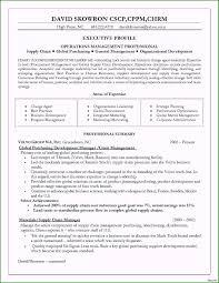 Hr Business Partner Resume Sample Limited-edition Hr ...