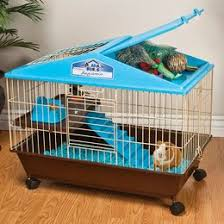 Water Beds And Stuff by Pet Furniture You U0027ll Love Wayfair