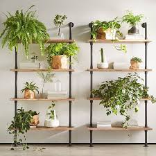 Exciting Plant Racks Indoor 89 For Your Minimalist With Plant