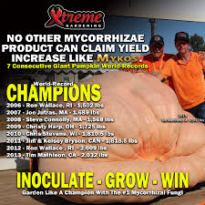 Atlantic Giant Pumpkin Record by Growing Giants Xtreme Gardening Mycorrhizae U0026 Natural Growth