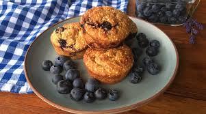 heidelbeer hirse muffins