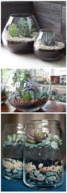 weekend project 1 terrariums for challenge