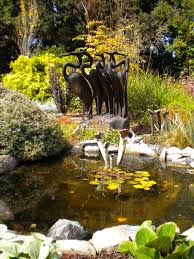 10 reasons to visit the Mendocino Coast Botanical Gardens right