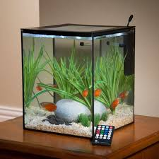 Extra Large Fish Tank Decorations by 51 Best Old Fish Tank Ideas Images On Pinterest Fish Tanks