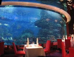 10 Most Intoxicating Underwater Restaurants - 10 Most Today I Really Want A Jellyfish Aquarium Home Pinterest Awesome Fish Tank Idea Cool Ideas 6741 The Top 10 Hotel Aquariums Photos Huffpost Diy Barconsole Table Mac Marlborough Tank Stand Alex Gives Up Amusing Experiments 18 Best Fish Images On Aquarium Ideas Diy Clear For Life Hexagon Hayneedle Bar Custom Tanks Ponds Designs For Freshwater Modern 364 And Tropical Ov Cylinder 2