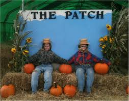 Sauvie Island Pumpkin Patch Cow Train by Family Friendly Halloween Activities In The Pacific Nw Chasing