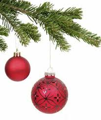 Aspirin Keep Christmas Trees Alive by Caring For A Christmas Tree Thriftyfun