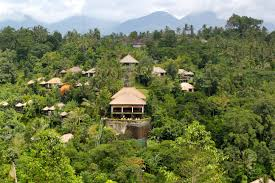 100 Ubud Hanging Garden Hotel Delectable Appliances Placements In S