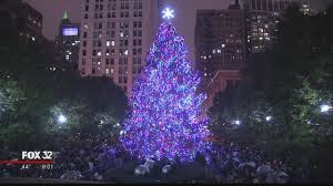Chicago Christmas Tree Officially Lit