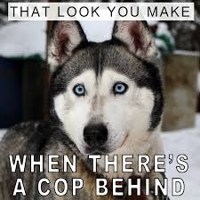 What Would You Do If There Is A Cop Behind You? - JIT Sales Best Tip Ever Cpg Can Use Jit Transportation Services Llc Freight Broker Alert Jhellyson Musiian From Dangerous Boyz College Of Just In Time Truckload Solutions Medical Device Pharmaceutical Service For Automation Agricultural Logistics Jit Plus Michigan Based Full Service Trucking Company Attention Editors Publication Embargo Tuesday 062017 2030 The 2018 Heavy Duty Aftermarket Trade Show Sales Kenworth Mix Trucks Is Chaing Fleet Owner Big Columbus Day Trailer Skirt Sales Oct 8th Till 14th
