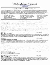 Sample Resume For International Business Development Manager New ... Thrive Rumes Business Development Manager Sales Oil Gas Project Management In Resume New 73 Cool Photos Of Samples Executive Prime 95 Representative Creative Cv Example Uk Examples By Real People Development Executive Strategy Velvet Jobs Sample Intertional Johnson Intertional Rumes Holaklonec Information