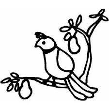 Partridge Clipart 77