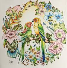 My Parrots Paradise From Johanna Basfords Gorgeous Magical Jungle Only With Prismacolors