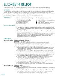 Executive Resume Templates Save Detailed Examples Elegant Cv Sample Luxury