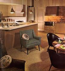 1960s Kitchens Decorating A Kitchen Photos With Even More Ideas From Retro Cabinets