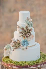 Succulent Wedding Cake Ideas