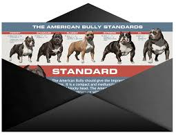 No Shed Dog Breeds Large by Pitbull Shedding And Do Pitbulls Shed
