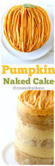 Ina Garten Foolproof Pumpkin Cupcakes by 19053 Best Pies Tarts And Cakes Recipes Images On Pinterest