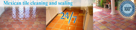 mexican tile cleaning and sealing carpet cleaning delray