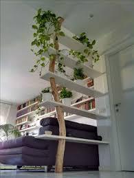 best 25 natural shelves ideas on pinterest tree shelf shelf