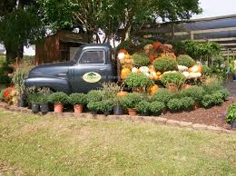 A Truck: A Truck Garden Small Truck Abandoned Garden California Stock Photo Edit Now Festival Plant Truck Feroni 156083986 Beer Coffee Food Trucks More Fill Qutyard Eater San You Have To See These Stunning Japanese Mini Gardens Contest Christmas Farm Flag 12 X 18 Wheelbarrow Sack Trolley Cart 75l Capacity Tipper An Old In The Garden Stock Image Image Of Green 37246657 Tonka Workshop Decorative Planter Natural Cedar Wood Olive Green Red Carolina Pine Country Store Wind Weather Solar Pickup Art Reviews Wayfair Wichitas Newest Food Eatin Hits Streets On