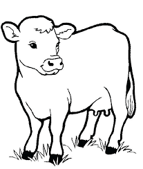 Full Image For Free Coloring Sheets Zoo Animals Find This Pin And More On
