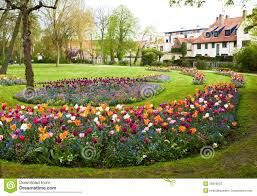 Flowers For Flower Beds by Large Flower Beds Full Of Colourful Flowers With Houses At