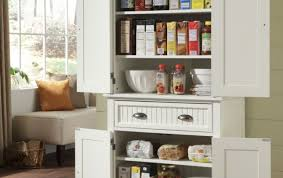 cabinet gripping kitchen storage ideas without cabinets