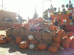 Pumpkin Patch Ct by Find The Perfect Pumpkin Patch In San Diego 2013