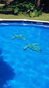 6x6 White Pool Tile by Custom Pool Tile Mosaics Swimming Pool Mosaic Tile Inlays Designs