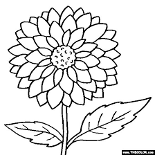 Dahlia Flower Online Coloring Page