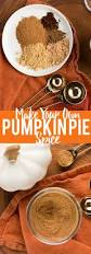 Storing Pumpkin Pie by Diy Pumpkin Pie Spice Fox And Briar