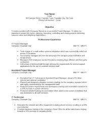 100 Assistant Project Manager Resume It Program Doc Resume Design Sample Resume Project