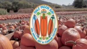 Pumpkin Fest Half Moon Bay by Half Moon Bay Art And Pumpkin Festival Visit California