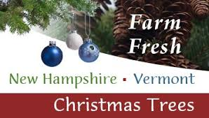 New Hampshire Vermont Christmas Tree Association